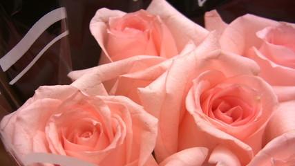 rotating roses