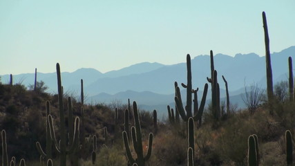 Southwestern desert landscape zoom out - HD