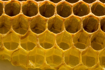 Hexagonal honeycomb structure edge