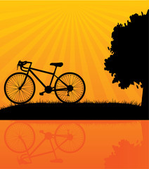 Bicycle, vector illustration