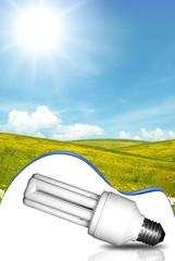 Energy-saving bulb and green panorama
