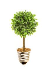 Eco tree lightbulb