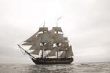Sailing Ship - 14343011