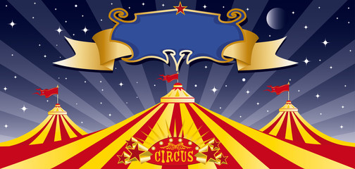 Circus big top in the night