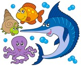 Aquatic animals collection 3 poster