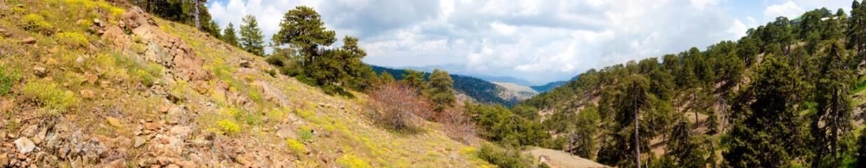 Panorama Mountain Wildlife Mediterranean