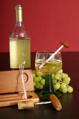 Weinflasche mit Aräometer
