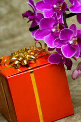 Gift box with purple orchid
