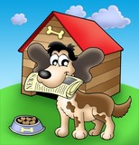 Dog with news in front of kennel poster