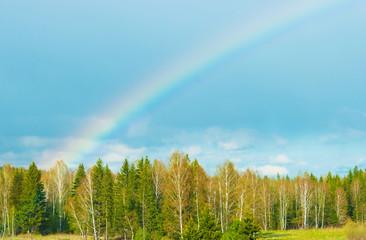 Rainbow after a spring rain