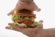 proposition d'un sandwich