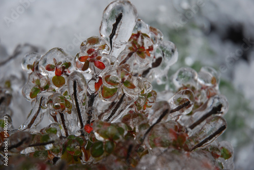 sople lodu © Krzysztof Budziakows