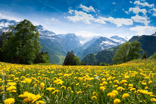 View from Braunwald