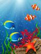 Fototapete Aquarium - Fisch - Unterwasserlandschaft