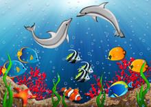 Undervattensvärld med delfiner och tropiska fiskar