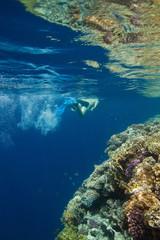 Man snorkeling in Red sea
