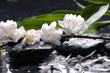 Wet stones and flower, petal with green leaf