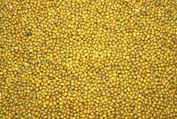 Green mungo  beans as texture