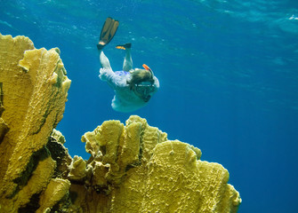 Women snorkeling near coral reef