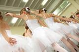 Fototapety Little ballerinas
