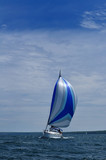 Sailboat with Blue Spinnaker Sail