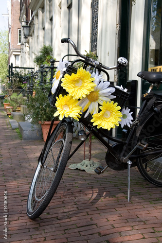 Symbol of Amsterdam, bicycle decorated with flowers