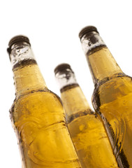 three bottles of beer with white background