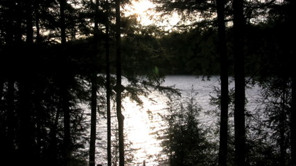 footage of sunset through trees over lake and dock