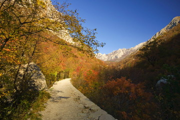 Footpath in np paklenica