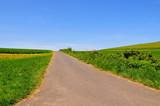 landschaft mit einsamer Strasse poster