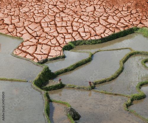 terre en danger - 14541049