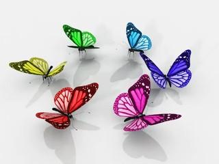 la valse des papillons