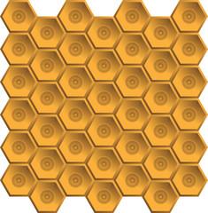 bees, wasp
