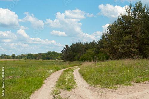 road on a meadow