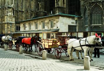Mehrere Pferdekutschen vor Dom Fiaker