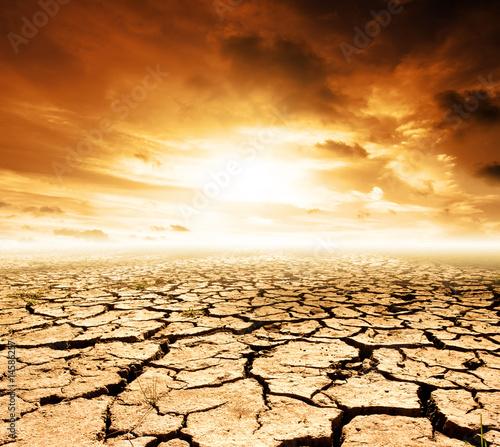 Future Landscape - 14586257