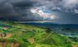 African landscape, rainy season