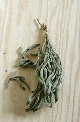 Bunch of dried sage on wood vertical