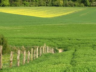 Prairie et champs
