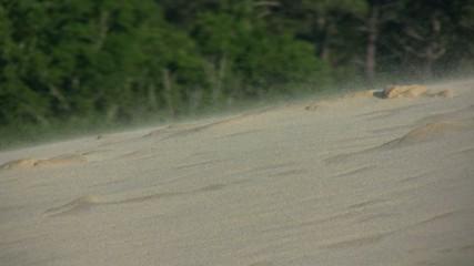 sable soulevé sur la dune