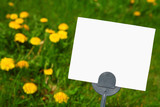 Blank Pesticide Lawn sign poster