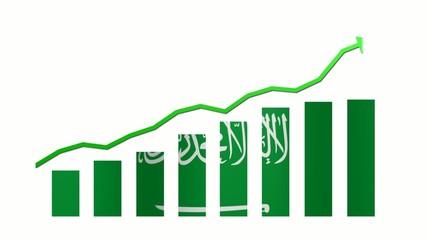 14/20 - Saudi Arabia - Nations of the G20