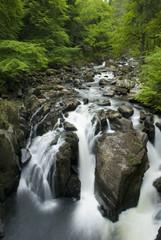Hermitage Falls, Dunkeld