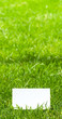 espace publicitaire sur une verte pelouse, nature et écologie