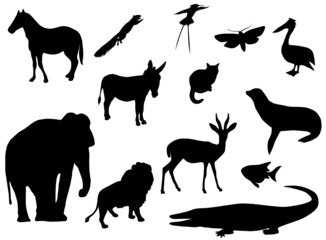 Illustration of animal silhouettes
