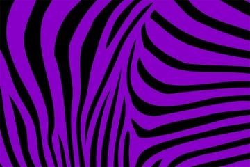 Zebra Textur Lila