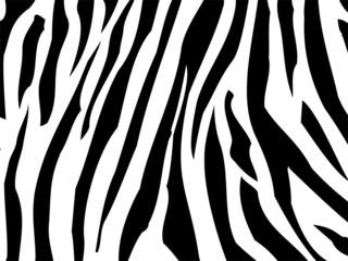 Zebra Textur Abstrakt
