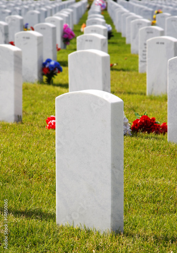 USA Military Cemetery Headstones & Flowers