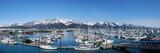 Seward Harbor Alaska wide shot