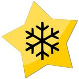 icon e-commerce, snowflake poster